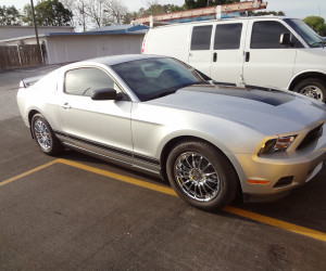 ford mustang auto tint