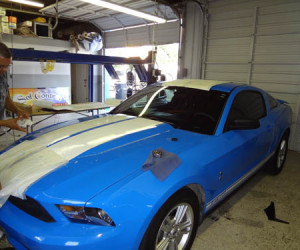 Ford Mustang Tint